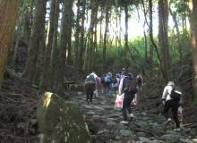 箱根八里を歩く